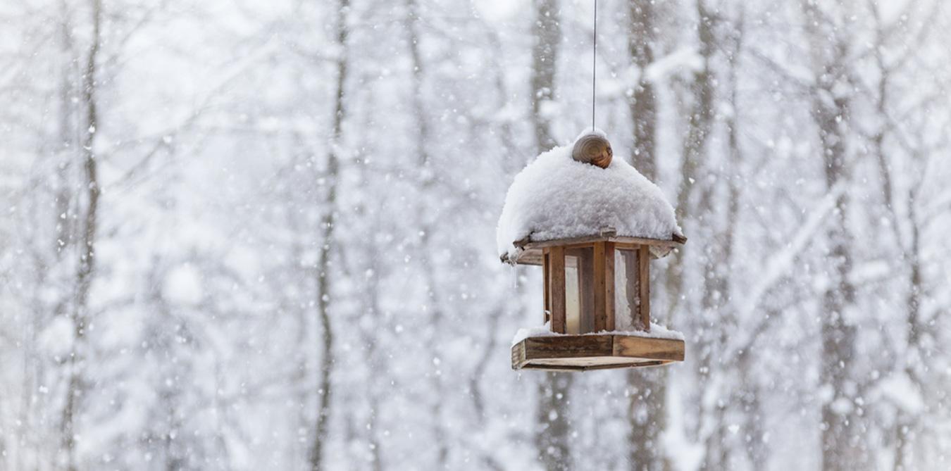 Girard_Gartenpflege_Winterdienst_3